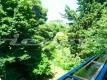 18 appartamento nocetta vienove monteverde P1040097