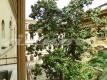 18 P1030531 Appartamento Cinque Scole Ghetto Centro Vienove