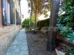5.5 Appartamento Monteverde Roma locazione Vienove immobiliare