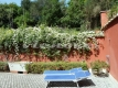 25 Villa Appia Antica Vienove