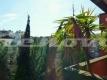 20 P1060134 Camilluccia appartamento Vienove Roma (1)