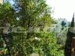 27 P1060180 Camilluccia appartamento Vienove Roma