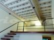 14 P1060324 Centro Storico Tartarughe Ghetto Portico d'Ottavia Vienove (1)