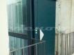 P1060316 Centro Storico Tartarughe Ghetto Portico d'Ottavia Vienove