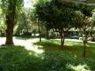 3.4 Villaggio Olimpico appartamento Vienove